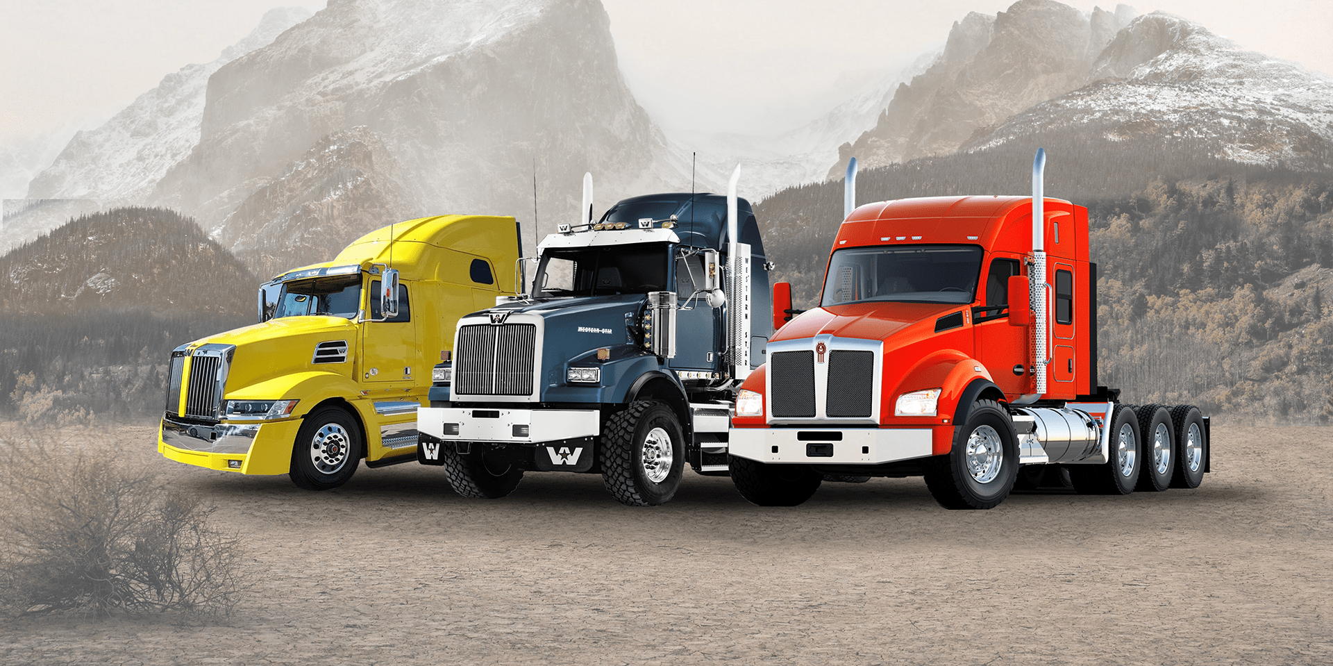 Popular Types of Trucks